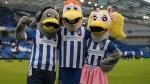 Team Review - Brighton & Hove Albion