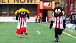 Team Review - Brentford